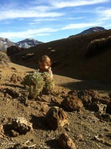 Leo in Teide